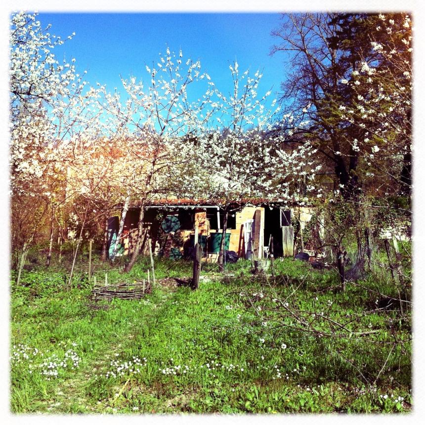 jardinmontcuq
